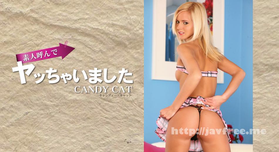 金8天国 1347 初撮り 素人呼んでヤッちゃいました CANDY CAT / キャンディー キャット 金8天国 キャンディー キャット kin8tengoku