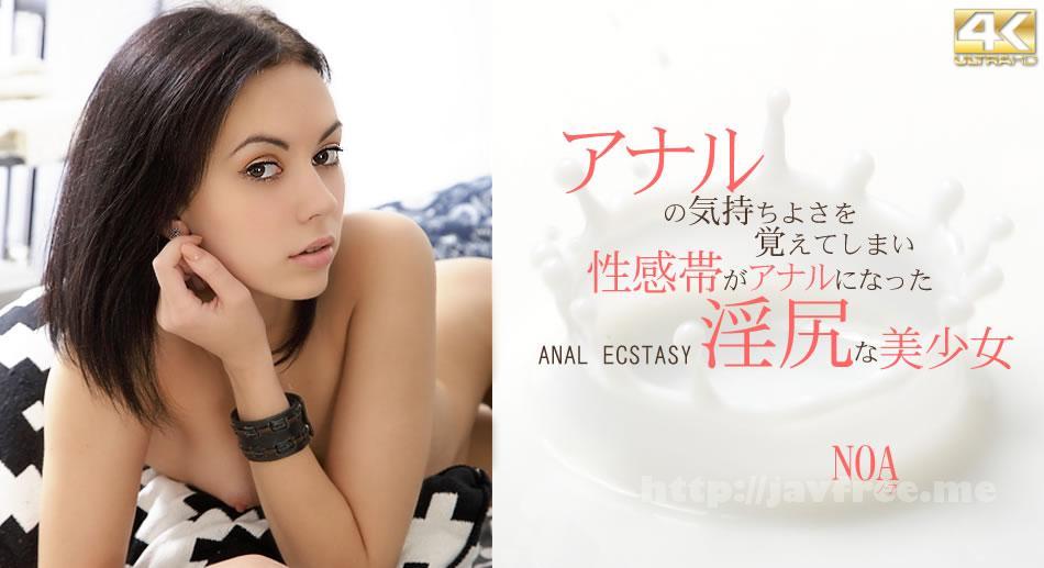 金8天国 1636 アナルの気持ち良さを覚えてしまい性感帯がアナルになった淫尻な美少女 NOA / ノア