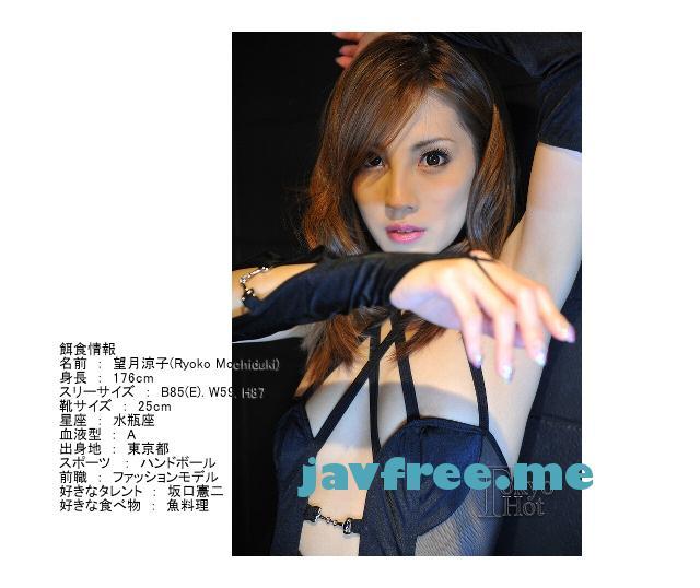 Tokyo Hot n0480 長身モデル強制アクメ悶絶死 望月涼子 - image n0480-5 on https://javfree.me