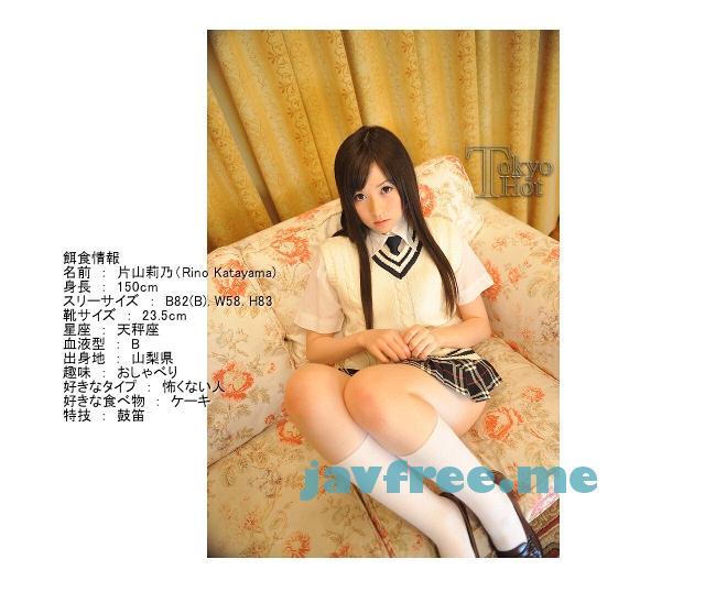 Tokyo Hot n0528 炉美満破壊2本挿鬼輪姦 片山莉乃