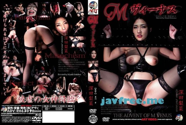 [ADV-R0657] 19才発情愛奴 - image ADV-R0630 on https://javfree.me