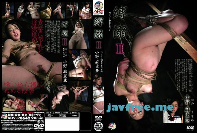 [ADV-R577] 巨乳PARANOIA 2 - image ADV-R0642 on https://javfree.me