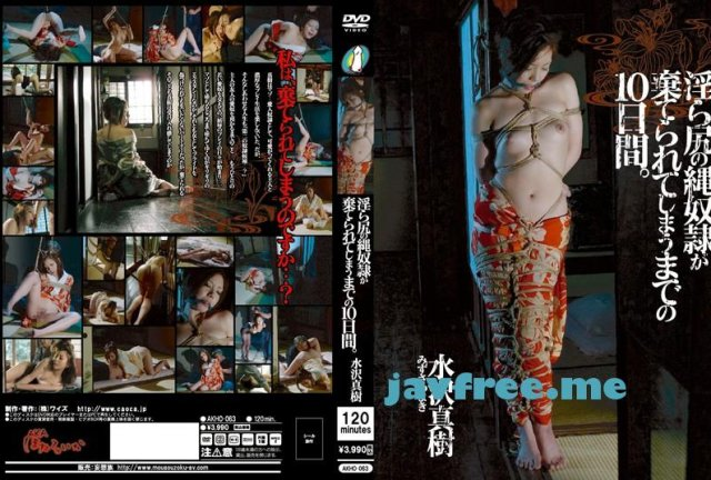 [TYOD-113] キマリすぎた2穴 水沢真樹 - image AKHO-063 on https://javfree.me