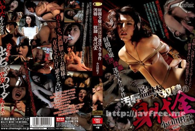 [ADVO-069] 倒錯求道者の夜8 - image CMC-145 on https://javfree.me