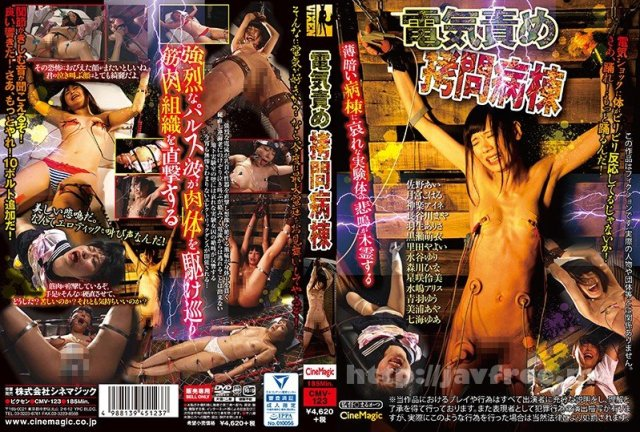 [HD][DLIX-007] 無毛ワレメ美少女8人VOL.02 - image CMV-123 on https://javfree.me