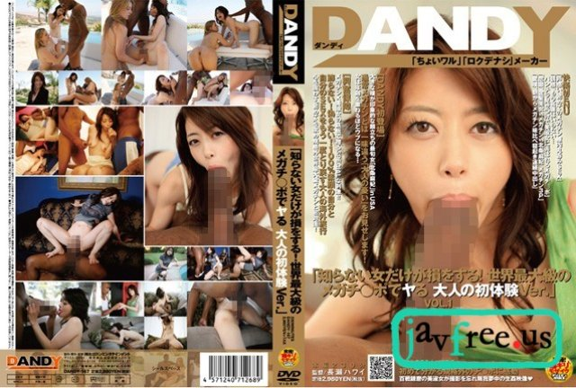 [LEG-008] Working Woman's Legs 08 大手総合法律事務所勤務 北条麻妃 - image DANDY-167 on https://javfree.me