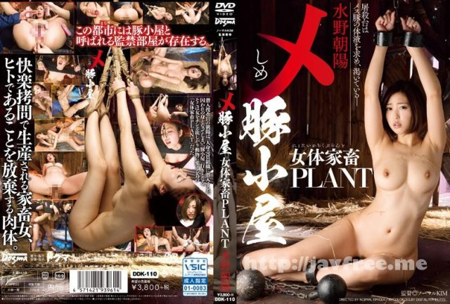 [DDK-110] メ 豚小屋 女体家畜PLANT 水野朝陽 - image DDK-110 on https://javfree.me