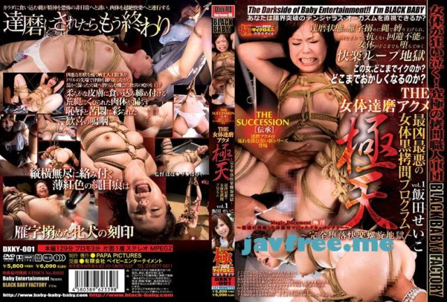 [MAD-184] 嬲棄山 17 せいこ ひなの - image DXKY-001 on https://javfree.me