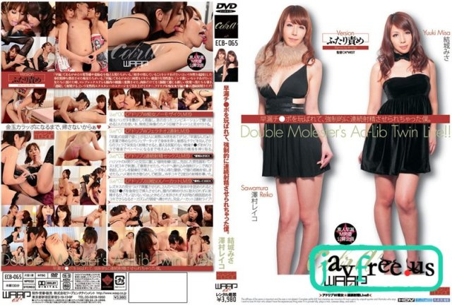 [TYWD-076] 淫乱BEST 淫乱淫語総集編 - image ECB-065 on https://javfree.me