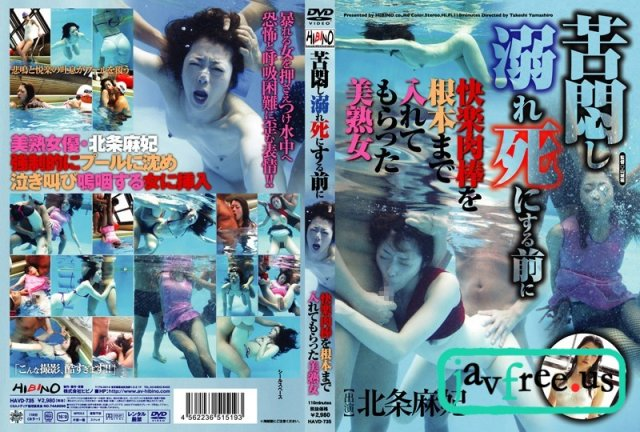 JGIRL PARADISE v019 ノーパン淫妻(滝沢優奈)  - image HAVD-735 on https://javfree.me