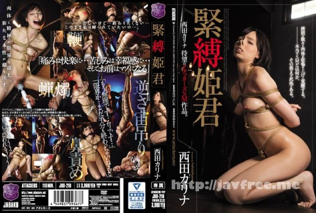 [HD][RBD-844] 服従女教師悪女の教壇 - image JBD-210 on https://javfree.me