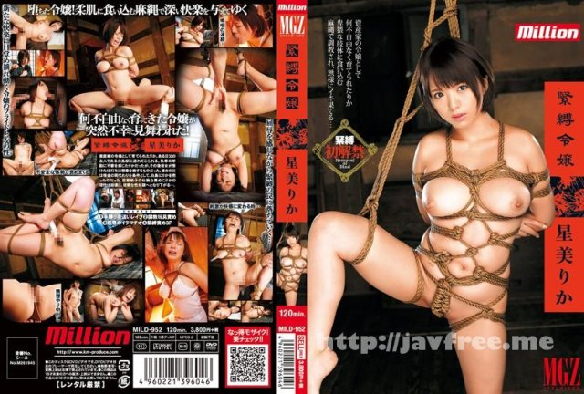 [IPZ-063] 星美りかの濃厚な接吻とSEX - image MILD-952 on https://javfree.me