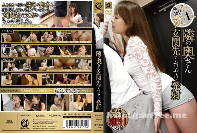 [NHDTA-489] 即ハメ痴漢 - image MLW-2063 on https://javfree.me