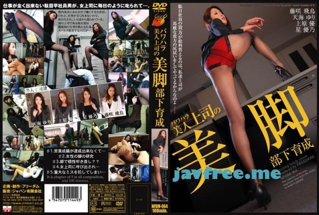 [STWR-006] パンストフェティッシュ倶楽部 Vol.6 - image NFDM-064 on https://javfree.me