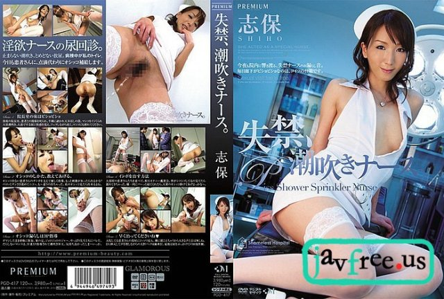 [SDDE-297] 性交マッサージ付き Premiumエアライン - image PGD-417 on https://javfree.me