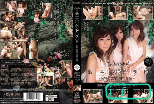 [PGD-448] For you… ~如月カレン、引退~ - image PXD021 on https://javfree.me