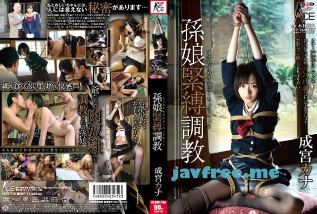[HD][NITR-402] 変態マゾ肛門おねだり淫語 VI - image SACE-119 on https://javfree.me