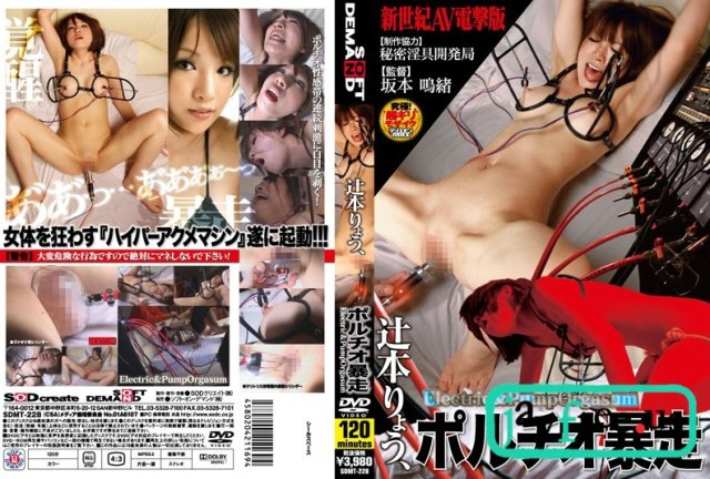 [YSN-219] 地獄突き 辻本りょう - image SDMT-228 on https://javfree.me