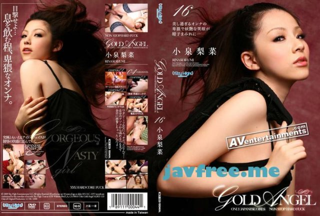 [SKY-133] Gold Angel Vol.16 : Rina Koizumi - image SKY-133 on https://javfree.me