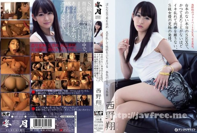 [TYOD-097] 野外ゲリラ淫乱SEX 西野翔 - image SMT-010 on https://javfree.me