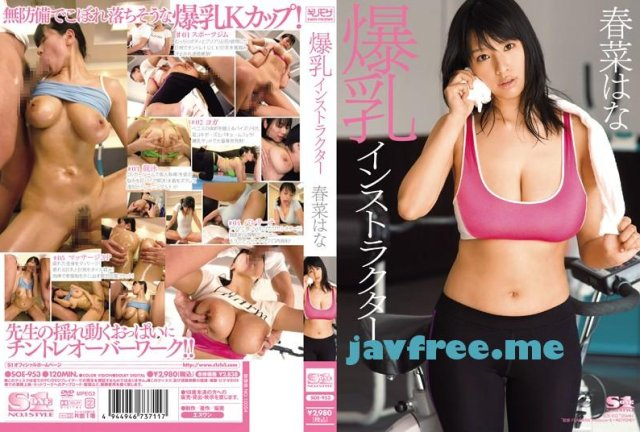 [SOE-889] ぶっかけ 春菜はな - image SOE-953 on https://javfree.me