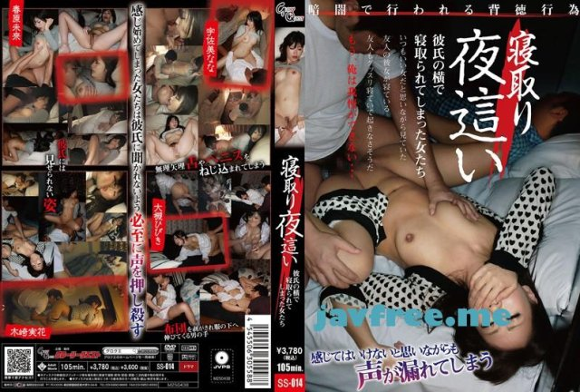 [SDDE-297] 性交マッサージ付き Premiumエアライン - image SS-014 on https://javfree.me