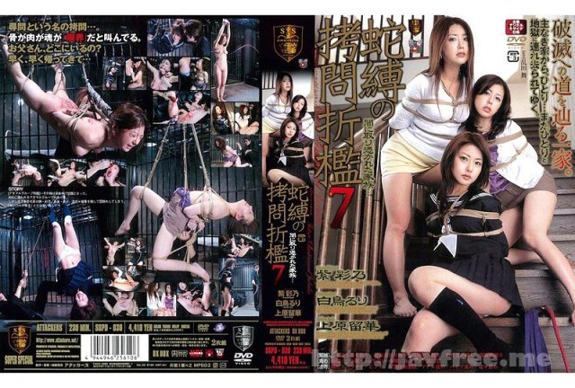 [SSPD-040] SM LIVE SHOW!! 青木りん 服従調教LIVE SPECIAL! - image SSPD-030 on https://javfree.me