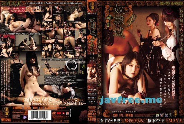 [ATID-178] バレットリヴァース SIDE B -恩讐- - image SSPD-073 on https://javfree.me