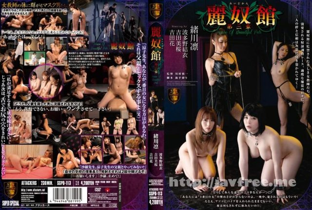 [IPZ-143] FIRST IDEAPOCKET 緒川凛 - image SSPD-113 on https://javfree.me