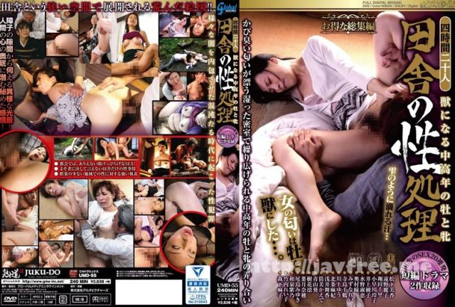 [HHED-39] 親戚のおばさん 井上綾子 - image UMD-55 on https://javfree.me