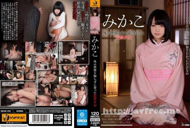 [HD][26ID-026] あべみかこSPECIAL BEST2 4時間 - image WANZ-316 on https://javfree.me