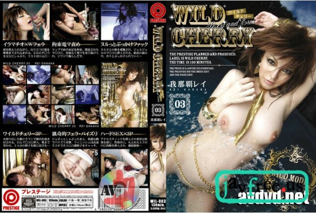 [WIL-023] 顔射の美学 05 - image WIL-003 on https://javfree.me