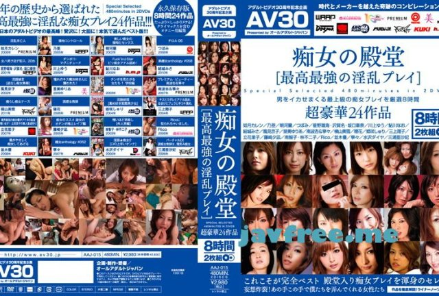 [HD][ID-009] 美脚ガーターストッキング BEST 4時間 - image aaj-015 on https://javfree.me