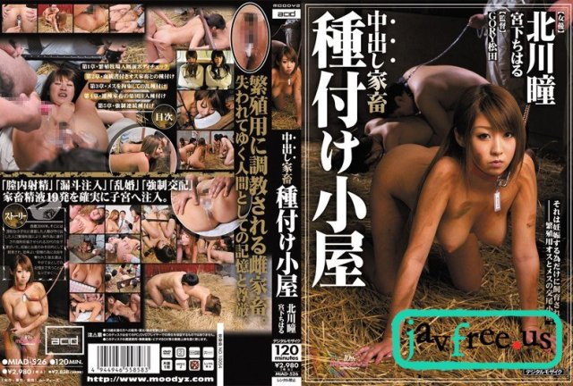 [VIKG-121] 声の出せない状況でヤル格別SEX - image miad-526 on https://javfree.me