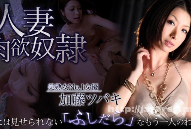 XXX-AV 22240 朝桐光 夫が恋しくて・・・  乱交編 - image xxxav-21773 on https://javfree.me